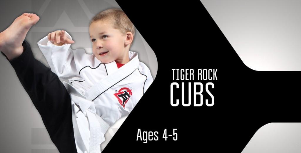 Cubs-Boomerang